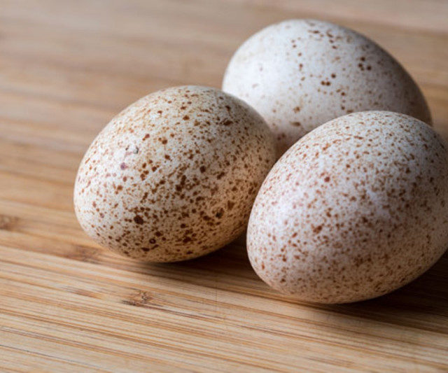 Индюшиные яйца полезнее куриных